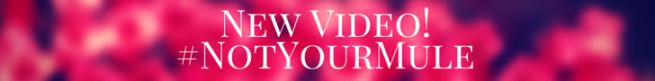 New Video!_NotYourMule